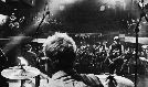 Potato Pirates (Album Release) tickets at Bluebird Theater in Denver