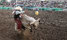 Utah's Own PRCA Rodeo tickets at Utah State Fairpark in Salt Lake City