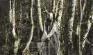 Heilung tickets at Webster Hall in New York