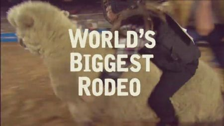 7 things to do at Houston Livestock Show and Rodeo