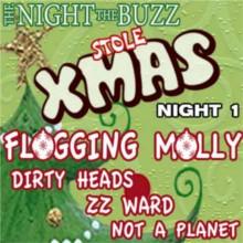 The Night The Buzz Stole Xmas