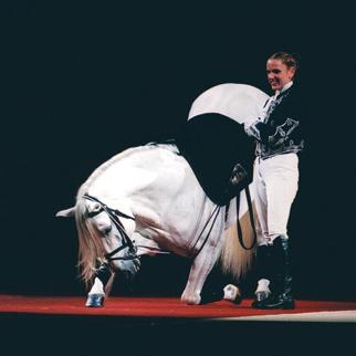 Lipizzaner Stallions Tour 2020 AEG Presents | The World Famous Lipizzaner Stallions